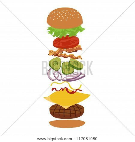 Burger isolated vector infographics illustration