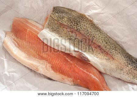 Two Fresh Rainbow Trout Fillets
