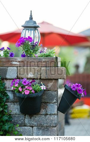 Detail of Stone Patio Pillar Decorated with Unlit Lamp and Purple Flowers in Hanging Pots - Recently Watered Flower Pots Hanging Off Stone Patio Pillar poster
