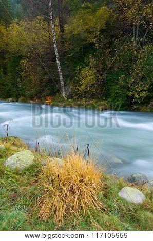 Aguas Limpias river in Sallent de Gallego, Tena Valley, Pyrenees, Huesca, Aragon, Spain.