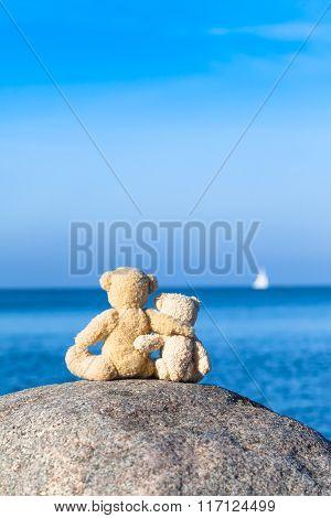Two Teddy Friends