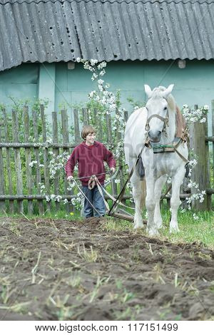 Teenage farm worker and white horse during traditional single-sided ploughing
