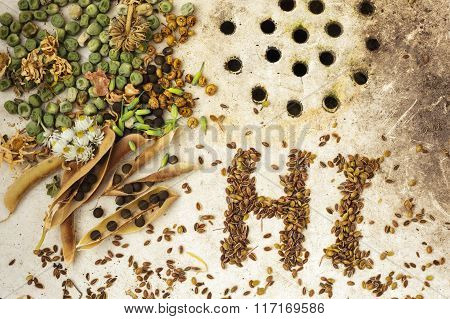 The Surface Of The Old Sink With Seeds And Peas. Text Hi Made From Seeds