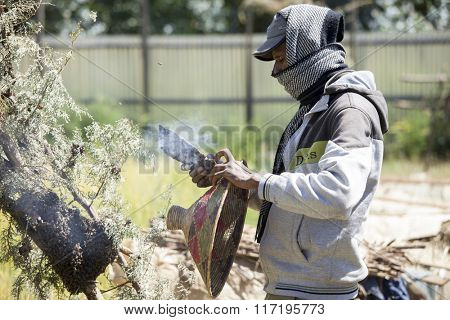 OROMIA, ETHIOPIA-NOVEMBER 6, 2014: Unidentified beekeeper tends to a wild beehive in Ethiopia