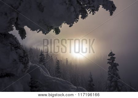 Foggy_Mountain_Forest_Trees_Layered_with_Hazy_Sunset.jpg