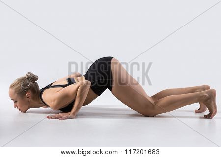 Eight-limbed Posture