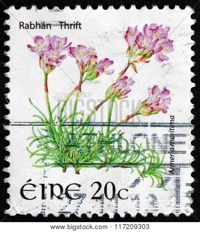 Postage Stamp Ireland 2008 Rabhan Thrift, Flowering Plant