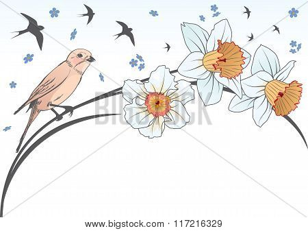 Bird And Narcissus