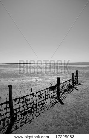 Fence with seaweed