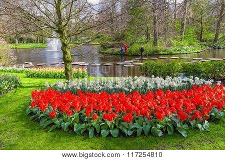 Springtime in the Keukenhof Gardens