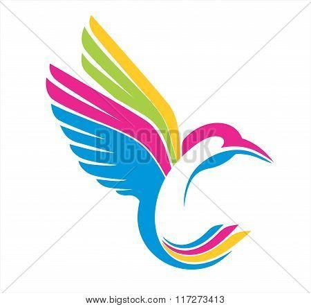 humming bird abstract colors