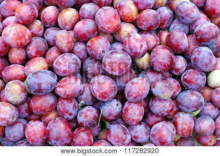 Plurality Of Red Plums Fruit
