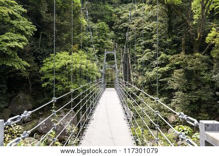 Suspension pedestrian bridge