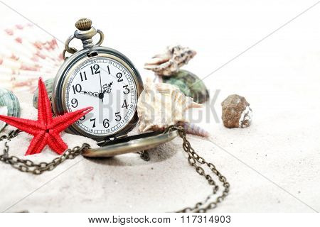 Shells And Watch