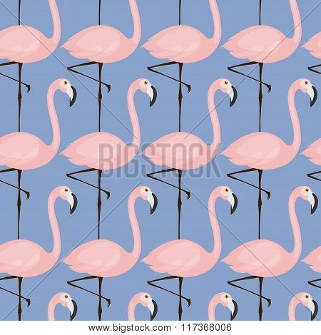 tender flamingo pattern