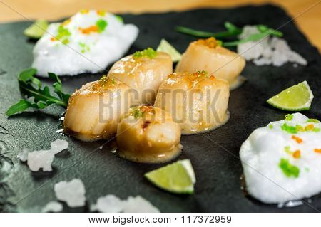 Studio Close Up Of Seared Scallops, Garnished With Greens And Sauce