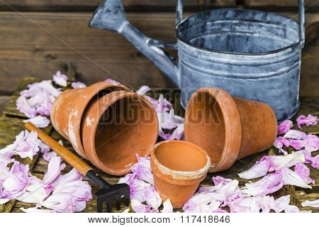 Still Life With Flower Pot