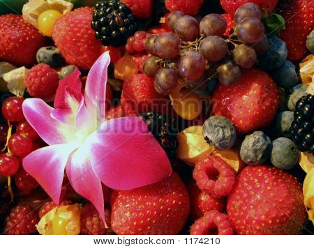 Berries And Flower In Farmers' Market