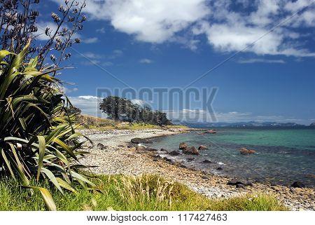 Coromandel peninsular, Firth of Thames, New Zealand