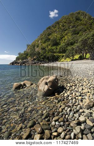 Fantail bay, Coromandel peninsular, New Zealand