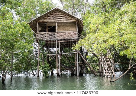 Treehouse on River