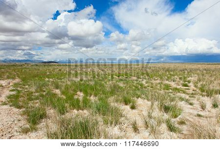 Desert lifeless place in Central Asia nature, travel,