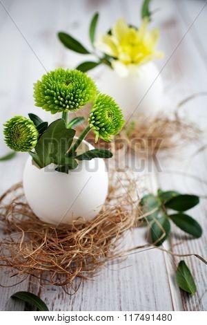 Fresh flowers in egg shells for Easter