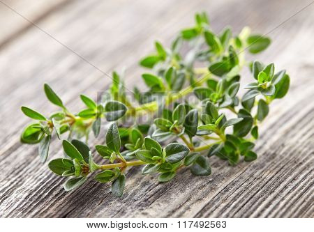 Thyme spices on a wooden background