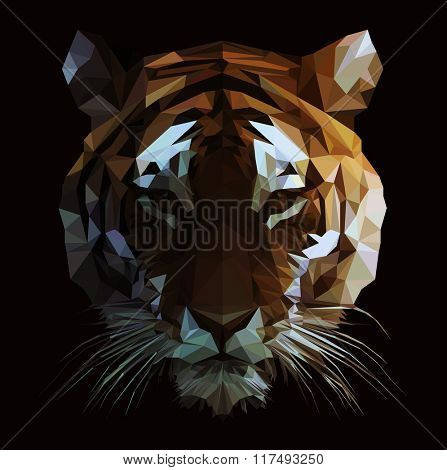 Low poly vector tiger illustration. Polygonal animal graphic design.