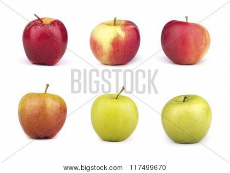 A Set Of Six Varieties Of Apples Isolated On White  Background