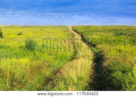 Forked Footpath On A Grassy Valley And Blue Cloudly Sky