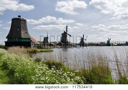 Windmills At Zaanse Schans, Amsterdam, Holland.