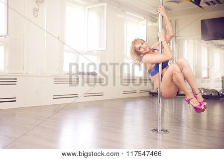 Sensual Woman On The Dance Pole