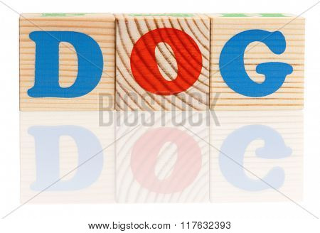 Dog word formed by colorful wooden alphabet blocks, isolated on white background