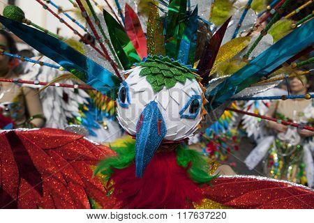 Multicolored Carnival Bird