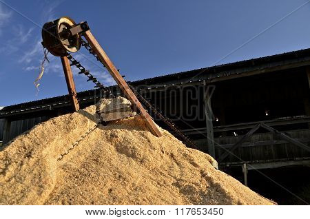 Sawdust leaves a mill by auger