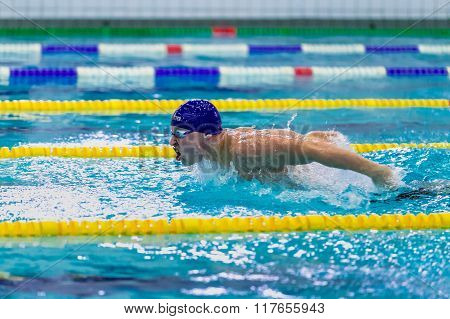 young male athlete swimming butterfly stroke in pool