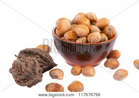 Ceramic pot full of hazelnuts isolated on white