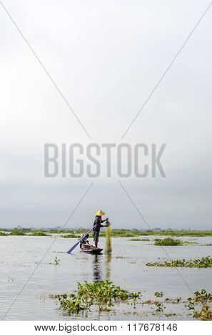 Fisherman catches fish on Inle Lake, Burma (Myanmar). Intha people from Shan State in this way catch fish to eat.