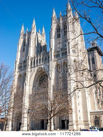 The Dc Cathedral