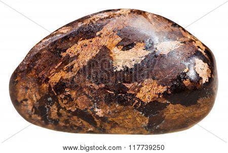 Pebble Of Bronzite Gemstone Isolated On White