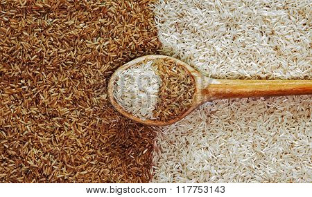 Brown And White Rice, Food Concept for contrast and diversity.
