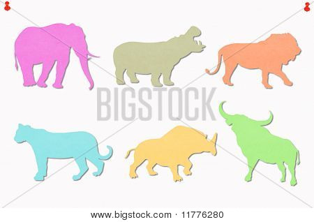 Wildlife multi colored notes on white background poster