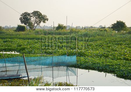 nature river in country landscape chachoengsao thailand