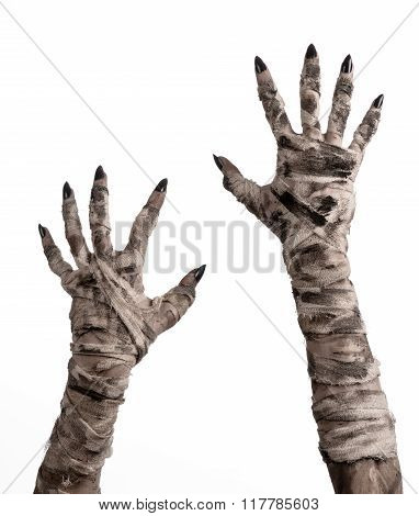 Halloween Theme: Terrible Old Mummy Hands On A White Background studio poster