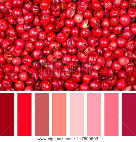 A background of dried pink peppercorns. In a colour palette with complimentary colour swatches.