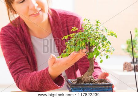Beautiful woman holding bonsai tree