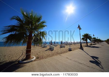 Concrete Path With Palms On Sandy Beach With Folded Umbrellas And Sunbeds, Burning Sun And Cloudless