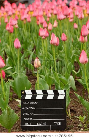 black and white cinema clapper board on the ground among field of pink tulips