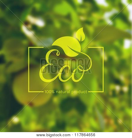 Eco product logo. Vector label.